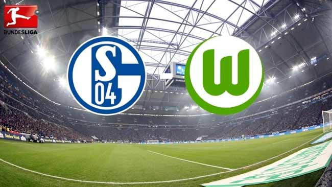 VfL Wolfsburg gegen Schalke 04